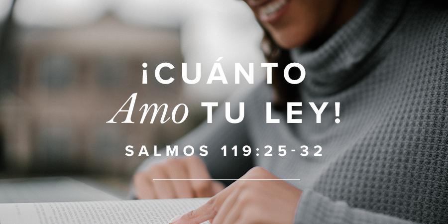 Cuanto amo tu ley! - Salmos 119:25-32 | Mujer Verdadera Blog